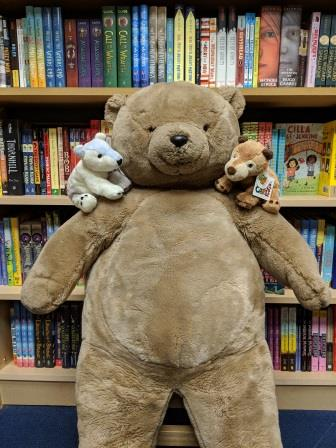 Bear and two bear friends pose in front of a bookshelf.